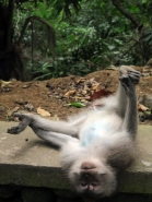 Ananda Balasana - Happy monkey pose